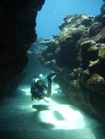Diver in Rarotonga