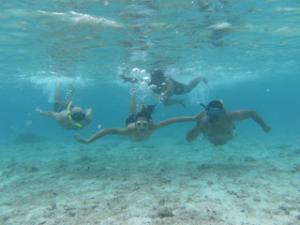 Snorkeling Rarotonga's Lagoon