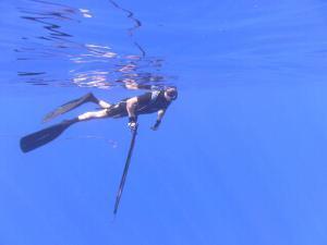 Spearfishing Rarotonga