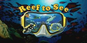 Reef To See in Rarotonga offers scuba diving and snorkeling