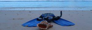 Snorkel gear for hire in Rarotonga, Cook Islands